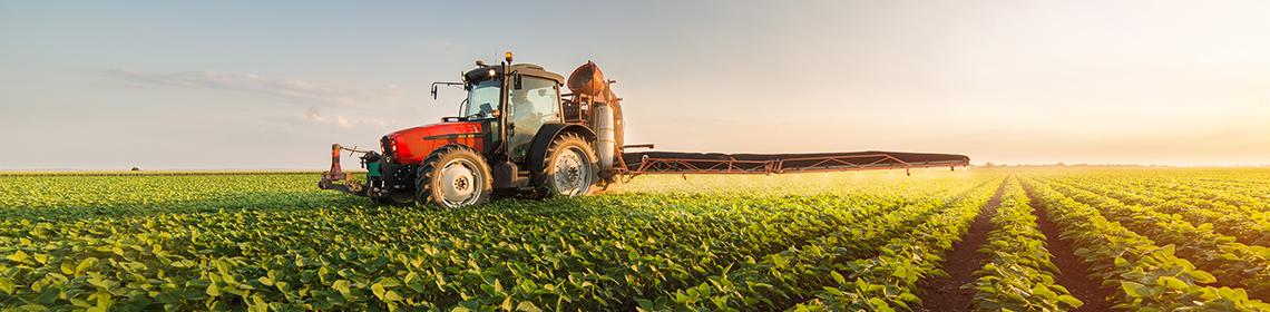 Biz Sizin sağlam dünyanıza Yaşıl pəncərəyik!  Alışdığınız Organik dadlara modern Agro üsullarla nail olun.